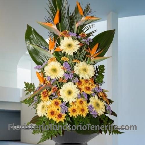 Centro Funerario Amarillo Tenerife para Tanatorio